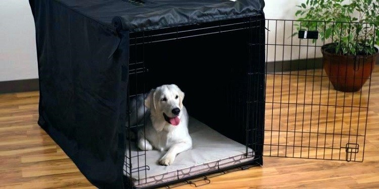 Covered Dog Crate